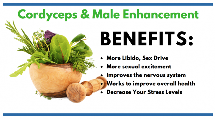 image listing the benefits of cordyceps for male enhancement