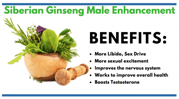 Siberian Ginseng consumer information article for male enhancement info