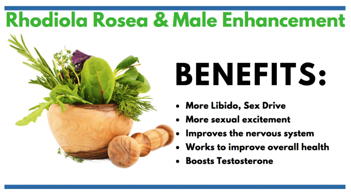 Rhodiola Rosea consumer information article for male enhancement info
