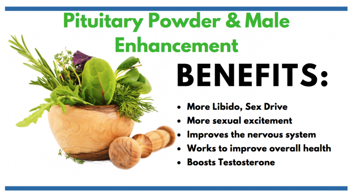 featured image of Pituitary Powder for consumer article
