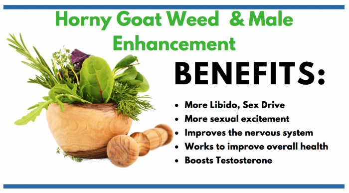 Horny Goat Weed featured image for consumer information article