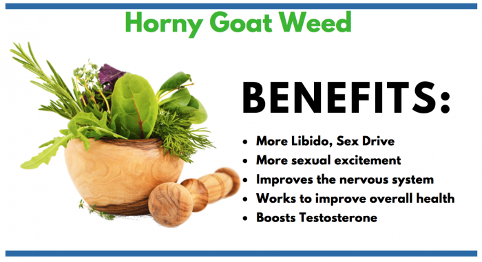 featured image of Horny Goat Weed for consumer info article