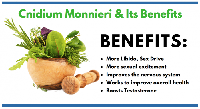 Cnidium Monnieri featured image for consumer article for men