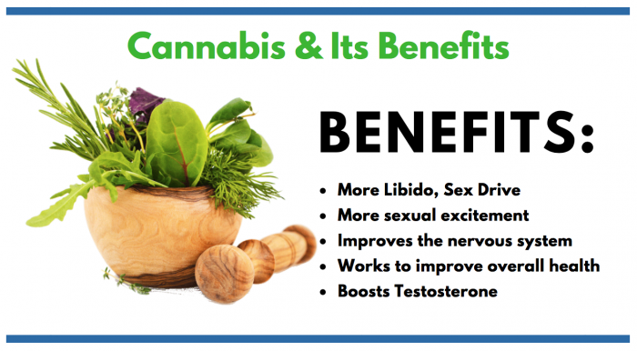 Cannabis featured image for article on Cannabis and male enhancement