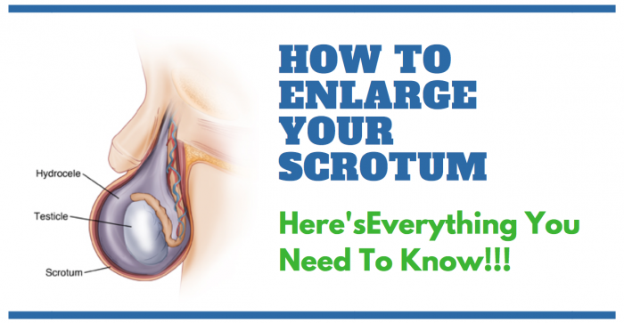 image saying how to enlarge your scrotum